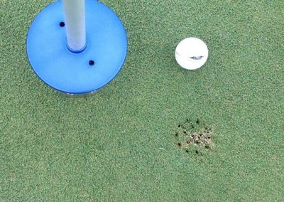 Brown Spot Aerated